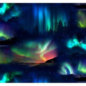 aurora borealis black in space