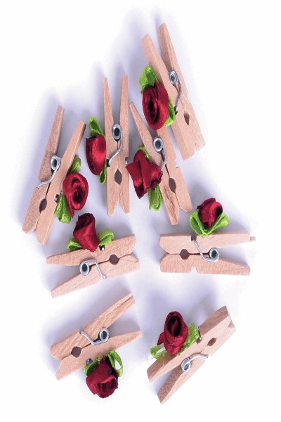 wooden-pegs-mini-clips-toy-accessories