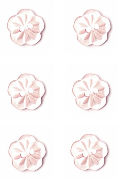 daisy-button-flower-light-pink-colour